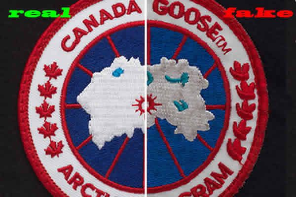 fake canada goose expedition